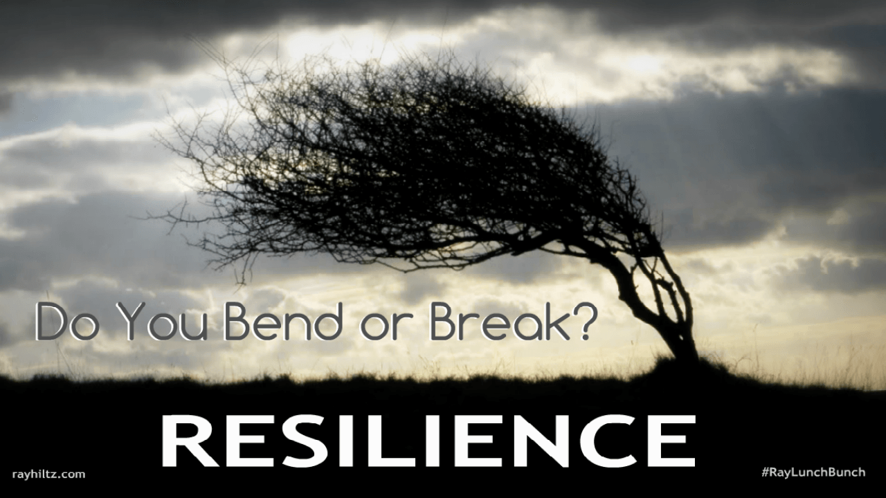 Resilience-bend-or-break-